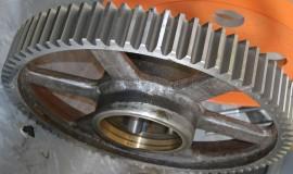 червячное зубчатое колесо